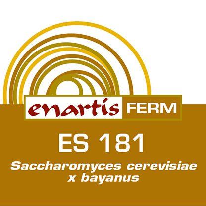 EnartisFerm ES181