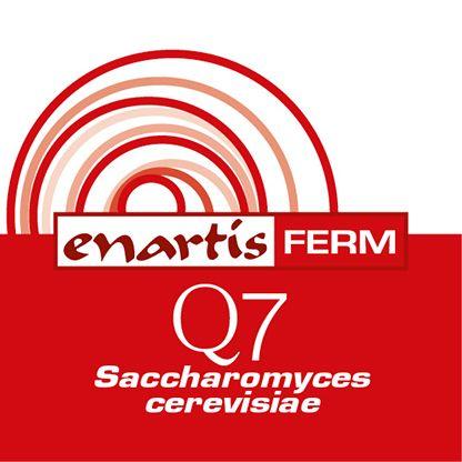EnartisFerm Q7