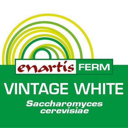 EnartisFerm Vintage White