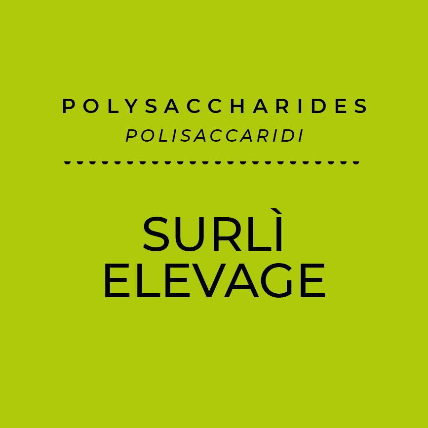 Surlì Elevage