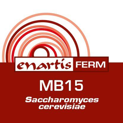 EnartisFerm MB15