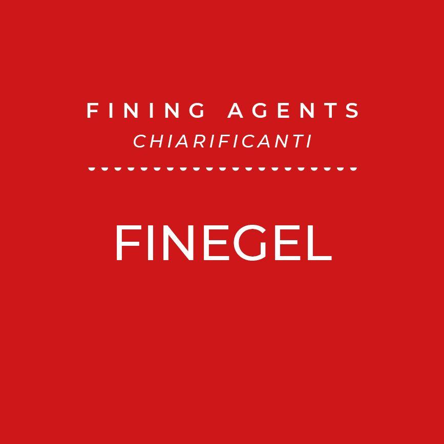 Finegel