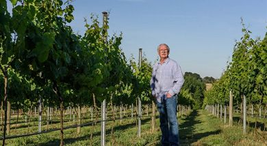 How is climate change affecting Australian vineyards and what are growers doing to respond?
