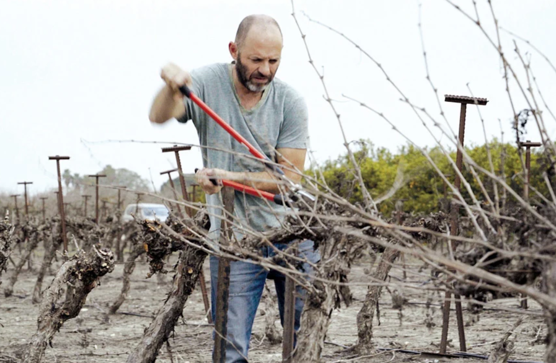 Wine talk: he adopted carignan… and Carignan adopted him