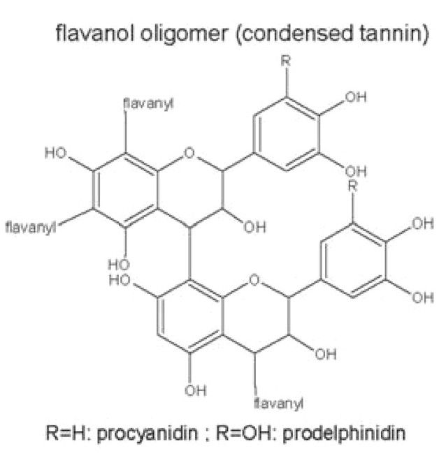 Structure and Properties of Wine Pigments and Tannins