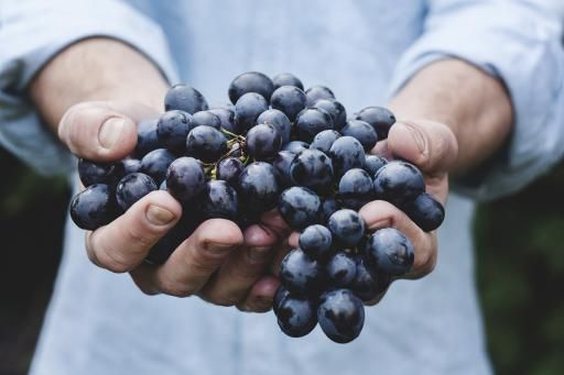 Nitty-gritty of grapes pushes newcomers into niche wines