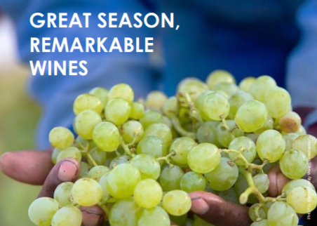 South African Wine Harvest Report 2020