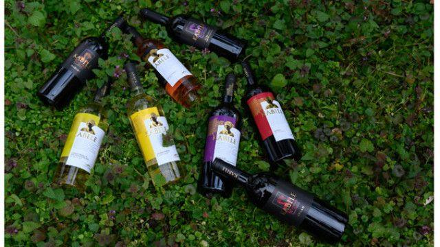 Ново признание за българските вина – серията KABILE се нареди сред най-добрите в света